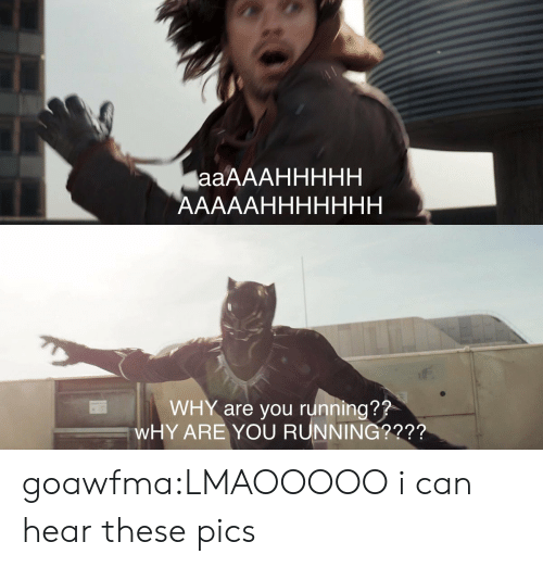 Can Hear: WHY are you running??  WHY ARE YOU RUNNING?2?? goawfma:LMAOOOOO i can hear these pics
