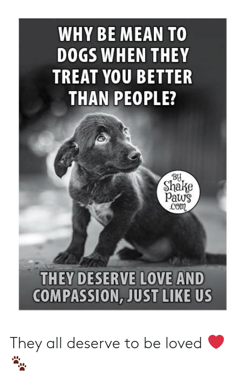 Dogs, Love, and Memes: WHY BE MEAN TO  DOGS WHEN THEY  TREAT YOU BETTER  THAN PEOPLE?  By  Shake  Paws  Com  THEY DESERVE LOVE AND  COMPASSION, JUST LIKE US They all deserve to be loved ❤️🐾