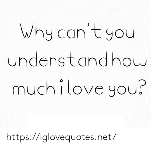 Net, Why, and You: Why can't you  understandhow  muchilove you? https://iglovequotes.net/