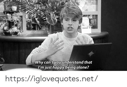 Being Alone, Happy, and Net: Why can'tyou understand that  I'm just happy being alone? https://iglovequotes.net/