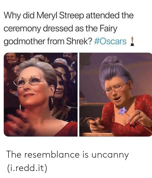 Oscars, Shrek, and Meryl Streep: Why did Meryl Streep attended the  ceremony dressed as the Fairy  godmother from Shrek? #Oscars l The resemblance is uncanny (i.redd.it)