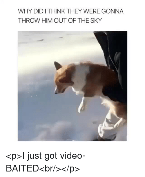 Baited: WHY DIDITHINK THEY WERE GONNA  THROW HIM OUT OF THE SKY <p>I just got video-BAITED<br/></p>