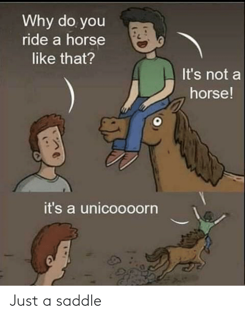Horse: Why do you  ride a horse  like that?  It's not a  horse!  it's a unicoooorn Just a saddle