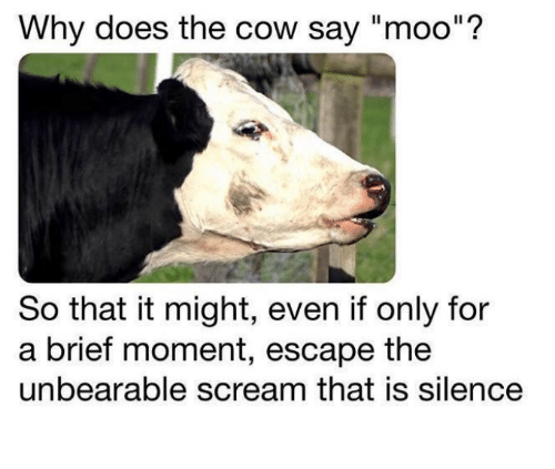 "Scream, Nihilist, and Silence: Why does the cow say ""moo""?  So that it might, even if only for  a brief moment, escape the  unbearable scream that is silence"