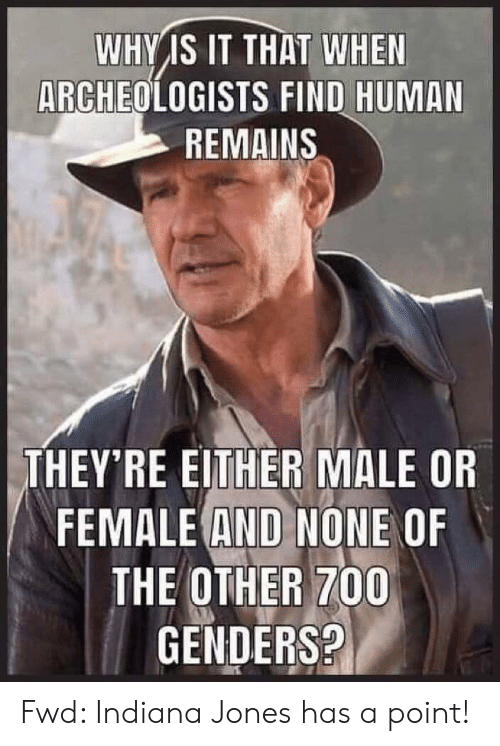 Indiana, Indiana Jones, and Forwardsfromgrandma: WHY IS IT THAT WHEN  ARCHEOLOGISTS FIND HUMAN  REMAINS  THEY'RE EITHER MALE OR  FEMALE AND NONE OF  THE OTHER 700  GENDERS? Fwd: Indiana Jones has a point!