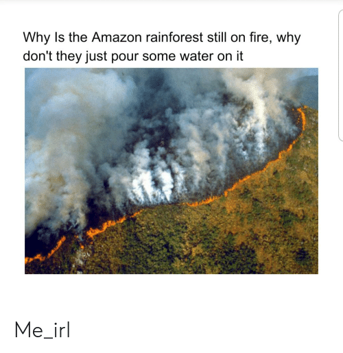 Pour Some: Why Is the Amazon rainforest still on fire, why  don't they just pour some water on it Me_irl