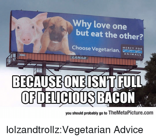 Advice, Animals, and Love: Why love one  but eat the other?  MERCY FOR  Choose Veget  ANIMALS  663  LAMAR  BECAUSEONEISNT FULL  OFDELICIOUS BACON  you should probably go to TheMetaPicture.com lolzandtrollz:Vegetarian Advice