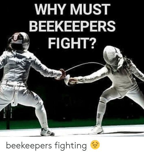 Fight, Fighting, and Why: WHY MUST  BEEKEEPERS  FIGHT? beekeepers fighting 😔