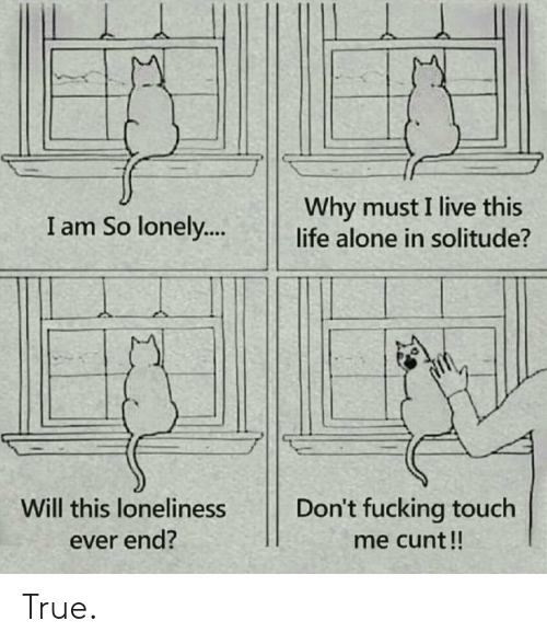 Being Alone, Fucking, and Life: Why must I live this  life alone in solitude?  I am So lonely...  Will this loneliness  Don't fucking touch  ever end?  me cunt!! True.