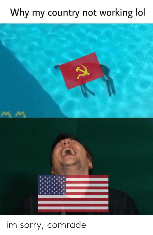 Why My Country Not Working Lol Im Sorry Comrade | Lol Meme on
