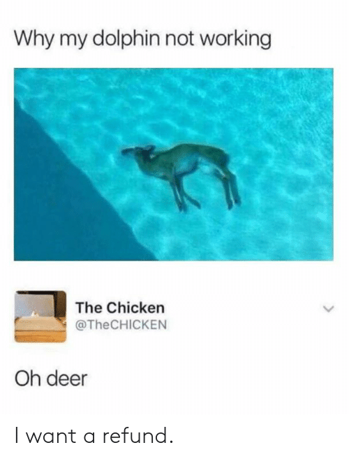 Dank, Deer, and Chicken: Why my dolphin not working  The Chicken  @TheCHICKEN  Oh deer I want a refund.
