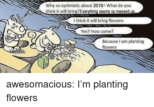 Tumblr, Blog, and Flowers: Why so optimistic about 2019? What do you  think it will bring?Everything seems so messed u  I think it will bring flowers  Yes? How come?  Because am planting  flowers awesomacious:  I'm planting flowers