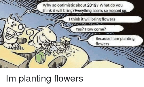 Optimistic: Why so optimistic about 2019? What do you  think it will bring?Everything seems so messed u  I think it will bring flowers  Yes? How come?  Because am planting  flowers Im planting flowers