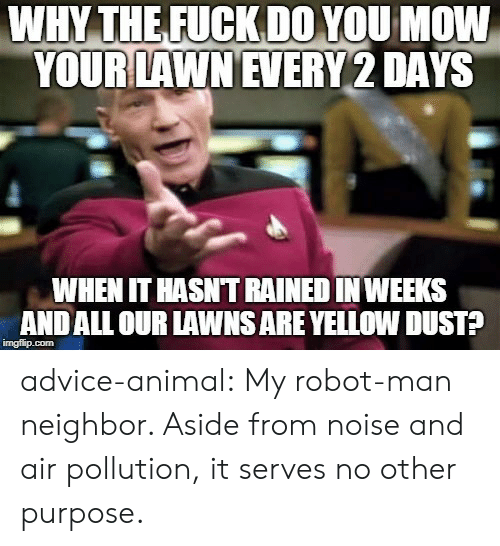 Advice, Tumblr, and Animal: WHY THEFUCKDOYOU MOW  YOUR LAWN EVERY 2 DAYS  WHEN IT HASNT RAINED IN WEEKS  ANDALL OUR LAWNS ARE YELLOW DUST? advice-animal:  My robot-man neighbor. Aside from noise and air pollution, it serves no other purpose.