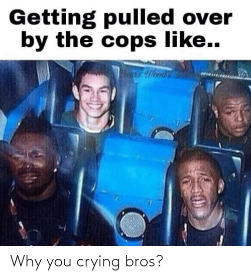 why you: Why you crying bros?