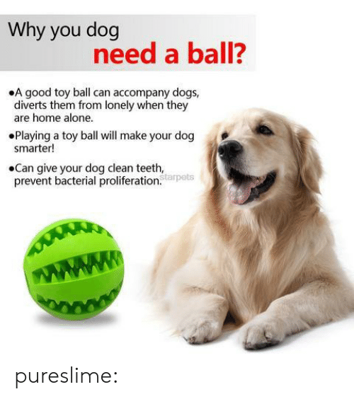 Clean Teeth: Why you dog  need a ball?  .A good toy ball can accompany dogs,  diverts them rom lonely when they  are home alone.  Playing a toy ball will make your dog  smarter!  .Can give your dog clean teeth,  prevnt bacterial proliferation  tarpets pureslime: