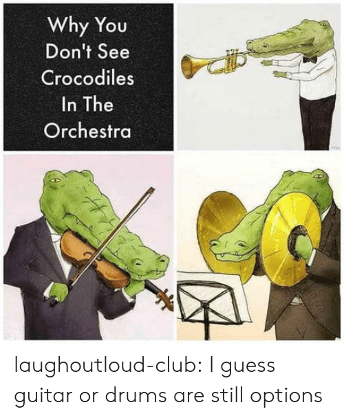 crocodiles: Why You  Don't See  Crocodiles  In The  Orchestra laughoutloud-club:  I guess guitar or drums are still options