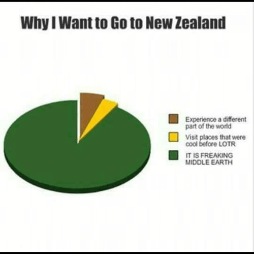 middle earth: WhyI Want to Go to New Zealand  Experience a different  part of the world  visit places that were  cool before LOTR  IT IS FREAKING  MIDDLE EARTH