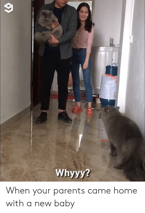 whyyy: Whyyy? When your parents came home with a new baby
