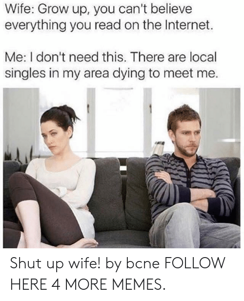 Dank, Internet, and Memes: Wife: Grow up, you can't believe  everything you read on the Internet.  Me: I don't need this. There are local  singles in my area dying to meet me. Shut up wife! by bcne FOLLOW HERE 4 MORE MEMES.