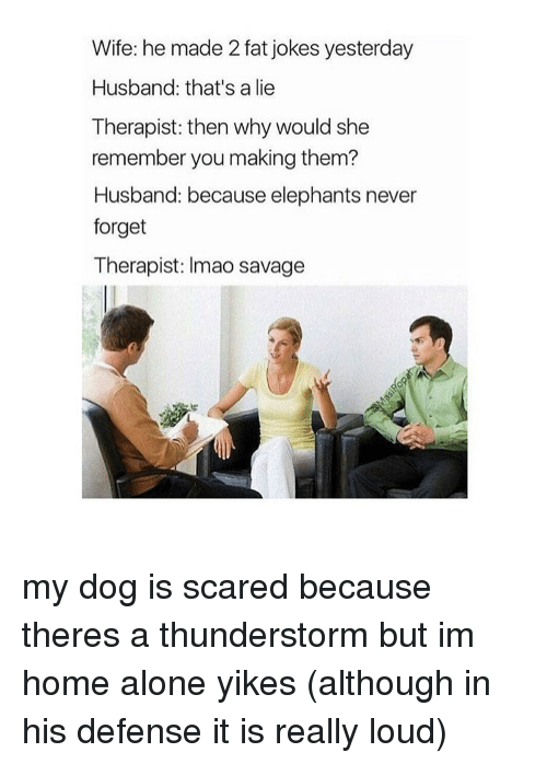 Thunderstorming: Wife: he made 2 fat jokes yesterday  Husband: that's a lie  Therapist: then why would she  remember you making them?  Husband: because elephants never  forget  Therapist: Imao savage my dog is scared because theres a thunderstorm but im home alone yikes (although in his defense it is really loud)