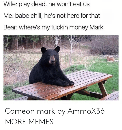 Dank, Memes, and Money: Wife: play dead, he won't eat us  Me: babe chillI, he's not here for that  Bear: where's my fuckin money Mark  IG TheFunnyintrovert Comeon mark by AmmoX36 MORE MEMES