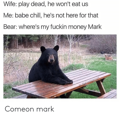 Wheres My: Wife: play dead, he won't eat us  Me: babe chillI, he's not here for that  Bear: where's my fuckin money Mark  IG TheFunnyintrovert Comeon mark