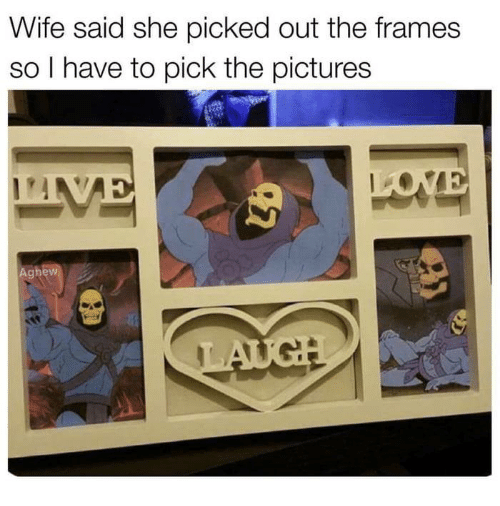 Funny, Pictures, and Wife: Wife said she picked out the frames  so l have to pick the pictures  Aghew
