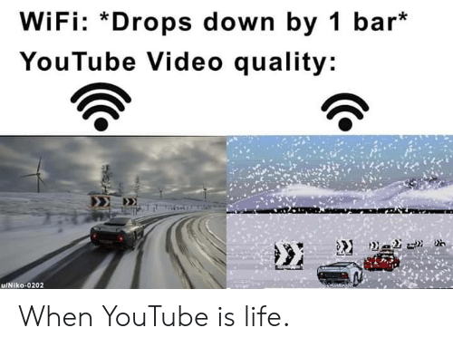 Youtube Video: WiFi: *Drops down by 1 bar*  YouTube Video quality: When YouTube is life.