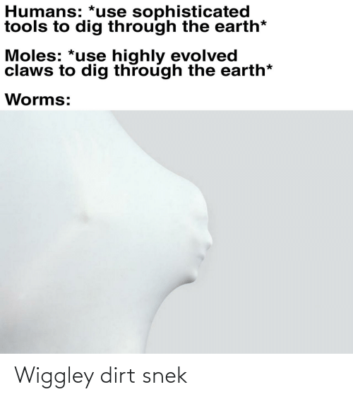 dirt: Wiggley dirt snek