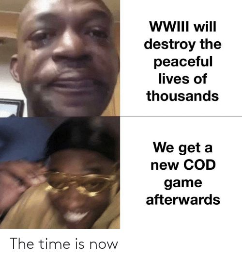 cod: WII will  destroy the  peaceful  lives of  thousands  We get a  new COD  game  afterwards The time is now