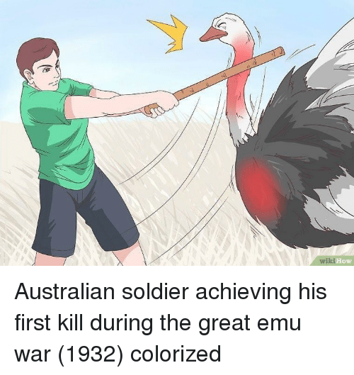 Wiki, Australian, and How: wiki  How Australian soldier achieving his first kill during the great emu war (1932) colorized