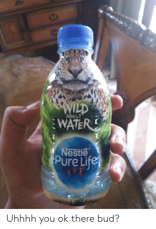 Life, Water, and Wild: WILD  WATER  ABOUT  Nestle  Pure Life Uhhhh you ok there bud?