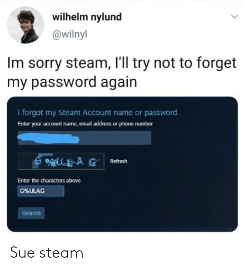 Wilhelm Nylund Im Sorry Steam I'll Try Not to Forget My Password
