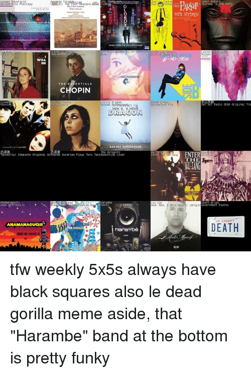 """Gorilla Memes: WILL  akeitsu: Complete Original So  Metropolis  ANAMANAGUGHI  THE E  ENTIALS  CHOPIN  Little  DRAGON  Sukarlan Plays Toru Take  de Lover  Albarn  Palke  Tourney To  The Nes  et Set Radio SEGA original Tra  ENTER  ang  THE  ear  God, I Hate Heseli (origin  CA EXEMPT  DEATH tfw weekly 5x5s always have black squares  also le dead gorilla meme aside, that """"Harambe"""" band at the bottom is pretty funky"""