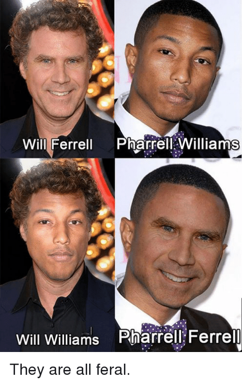 ferrell: Will Ferrell Pharrell Williams  Will Williams Pharrell Ferrel They are all feral.