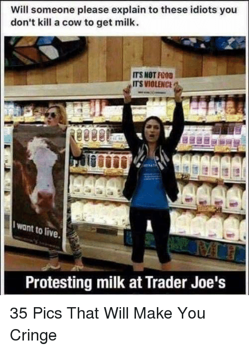 Food, Live, and Trader Joes: Will someone please explain to these idiots you  don't kill a cow to get milk.  ITS NOT FOOD  ITS VIOLENC  I want to live  Protesting milk at Trader Joe's 35 Pics That Will Make You Cringe