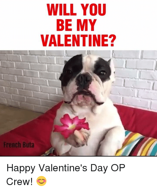 Memes, 🤖, and Crew: WILL YOU  BE MY  VALENTINE?  French Buta Happy Valentine's Day OP Crew! 😊