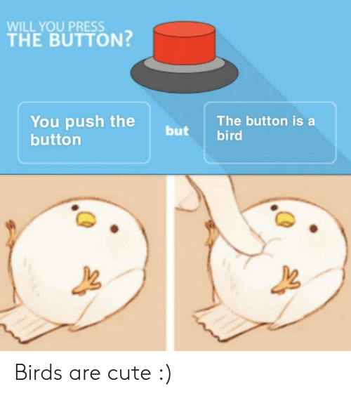 Cute, Birds, and Push: WILL YOU PRESS  THE BUTTON?  You push the  buttorn  The button is a  but bird Birds are cute :)