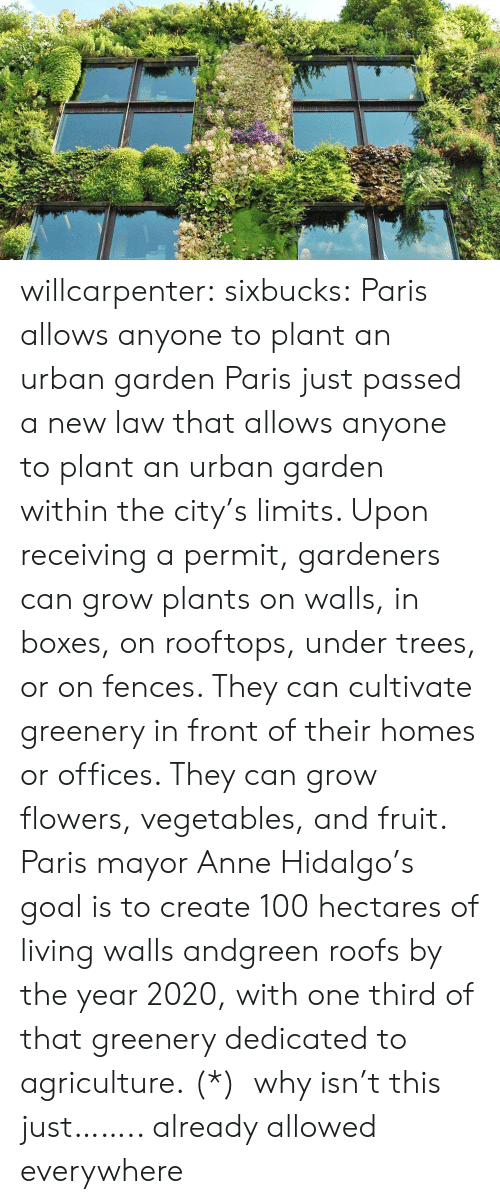 cultivate: willcarpenter:  sixbucks:    Paris allows anyone to plant an urban garden     Paris just passed a new law that allows anyone to plant an urban garden within the city's limits. Upon receiving a permit, gardeners can grow plants on walls, in boxes, on rooftops, under trees, or on fences. They can cultivate greenery in front of their homes or offices. They can grow flowers, vegetables, and fruit. Paris mayor Anne Hidalgo's goal is to create 100 hectares of living walls andgreen roofs by the year 2020, with one third of that greenery dedicated to agriculture.    (*)  why isn't this just…….. already allowed everywhere
