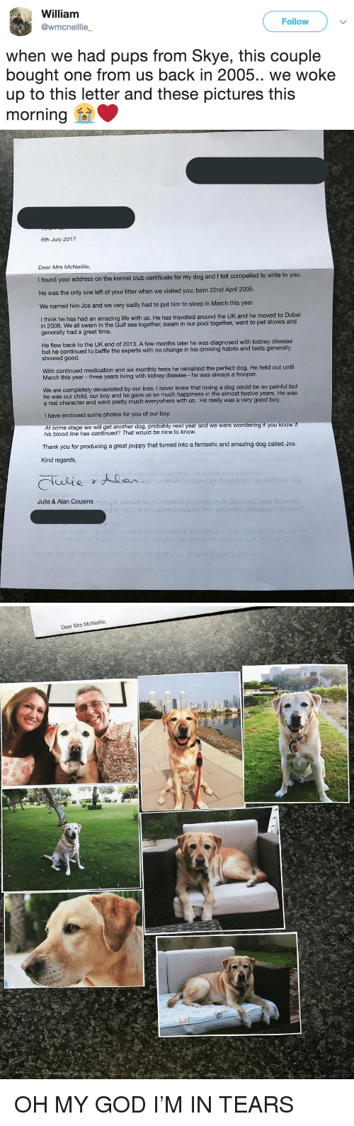 Club, Drinking, and God: William  @wmcneillie  Follow  when we had pups from Skye, this couple  bought one from us back in 2005.. we woke  up to this letter and these pictures this  morning釡   6th July 2017  Dear Mrs McNeillie  I found your address on the kennel club certificate for my dog and I felt compelled to write to you  He was the only one left of your litter when we visite  d you; born 22nd April 2005  We named him Jos and we very sadly had to put him to sleep in March this year  I think he has had an amazing life with us. He has travelled around the UK and he moved to Dubai  in 2008. We all swam in the Gulf sea together, swam in our poo  generally had a great time.  I together, went to pet shows and  He flew back to the UK end of 2013. A few months later he was diagnosed with kidney disease  but he continued to baffle the experts with no change in his drinking habits and tests generally  showed good.  With continued medication and six monthly tests he remained the perfect dog. He held out until  March this year - three years living with kidney disease- he was always a trooper.  We are completely devastated by our loss. I never knew that losing a dog could be so painful but  he was our child, our boy and he gave us so much happiness in the almost twelve years. He was  a real character and went pretty much everywhere with us. He really was a very good boy.  I have enclosed some photos for you of our boy  At some stage we will get another dog, probably next year and we were wondering if you know if  his blood line has continued? That would be nice to know.  Thank you for producing a great puppy that turned into a fantastic and amazing dog called Jos.  Kind regards,  Julie & Alan Cousins   Dear Mrs McNeillie <p>OH MY GOD I'M IN TEARS</p>