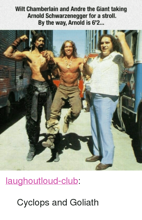 "goliath: Wilt Chamberlain and Andre the Giant taking  Arnold Schwarzenegger for a stroll.  By the way, Arnold is 6'2. <p><a href=""http://laughoutloud-club.tumblr.com/post/167019835951/cyclops-and-goliath"" class=""tumblr_blog"">laughoutloud-club</a>:</p>  <blockquote><p>Cyclops and Goliath</p></blockquote>"