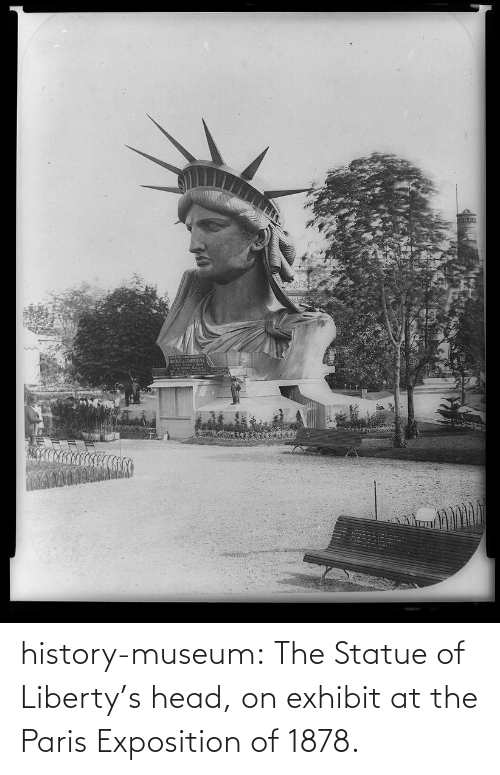 Head, Tumblr, and Blog: WINTAIDIPANE history-museum:  The Statue of Liberty's head, on exhibit at the Paris Exposition of 1878.