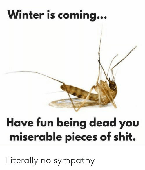 miserable: Winter is coming...  Have fun being dead you  miserable pieces of shit. Literally no sympathy