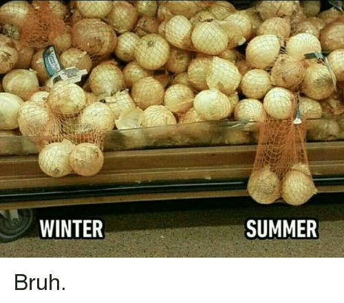 Bruh, Memes, and Winter: WINTER  SUMMER Bruh.