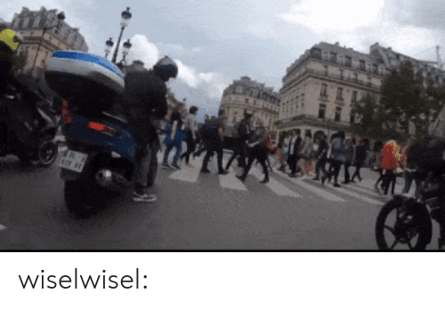 Gif, Tumblr, and Blog: wiselwisel: