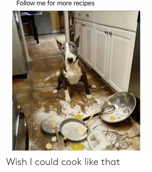 Wish: Wish I could cook like that