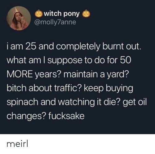 oil: witch pony  @molly7anne  i am 25 and completely burnt out.  what am I suppose to do for 50  MORE years? maintain a yard?  bitch about traffic? keep buying  spinach and watching it die? get oil  changes? fucksake meirl