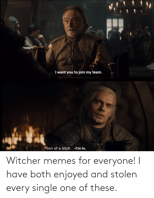 For Everyone: Witcher memes for everyone! I have both enjoyed and stolen every single one of these.