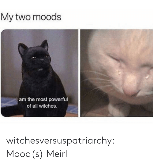Moods: witchesversuspatriarchy:  Mood(s)   Meirl